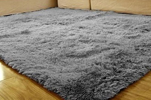 ACTCUT Ultra Soft Thick Indoor Modern Shaggy Area Rugs for Livingroom
