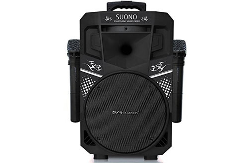 Pure Acoustics Wireless Bluetooth PA Audio Speaker with Wireless Microphones