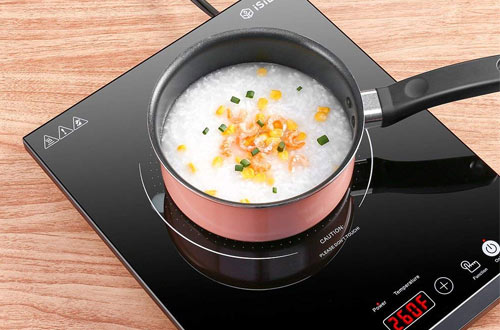 Top 10 Best Portable Electric Countertop Burners Reviews