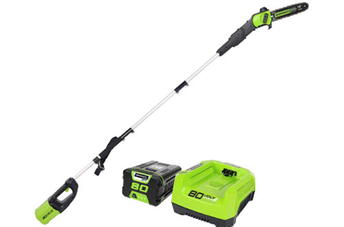 Greenworks PRO 10-Inch 80V Cordless Pole Saw with Battery