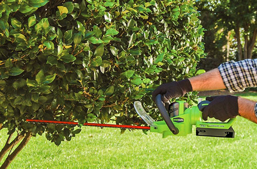 Greenworks 22-Inch 24V Cordless Hedge Trimmer