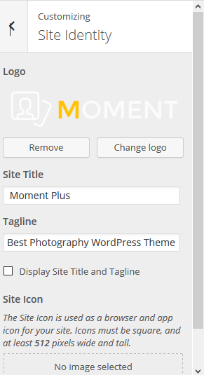 moment-site-identity
